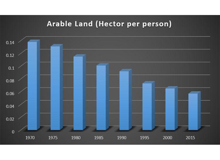 Figure 3: Arable Land in Bangladesh