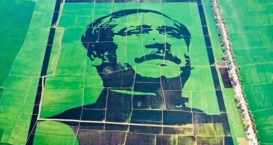 Crop field mosaic honouring Bangabandhu makes it to Guinness World Records