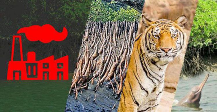 সুন্দরবনের সংকটাপন্ন এলাকায় কারাখানা স্থাপনে বৈষম্য চলবে না : হাইকোর্ট