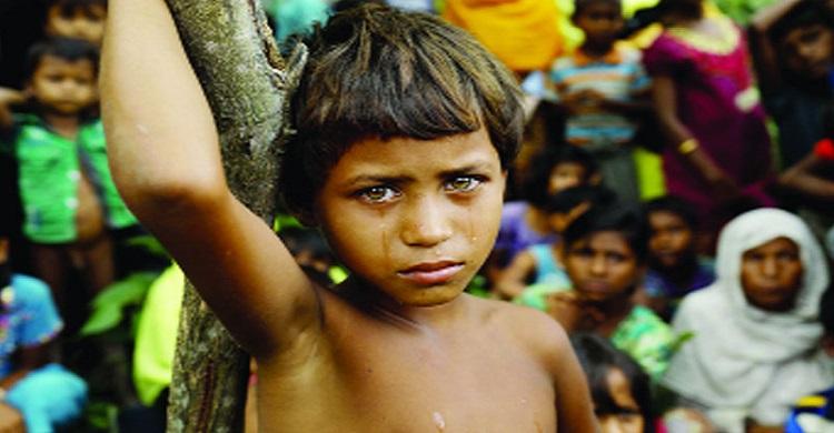 রোহিঙ্গাদের সরকারি আইনগত সহায়তা প্রদানে হটলাইন চালুর দাবি ব্লাস্টের